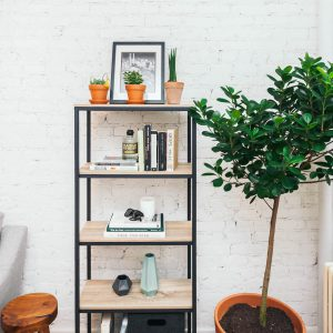 Bookshelf with tree accessorized to achieve a
