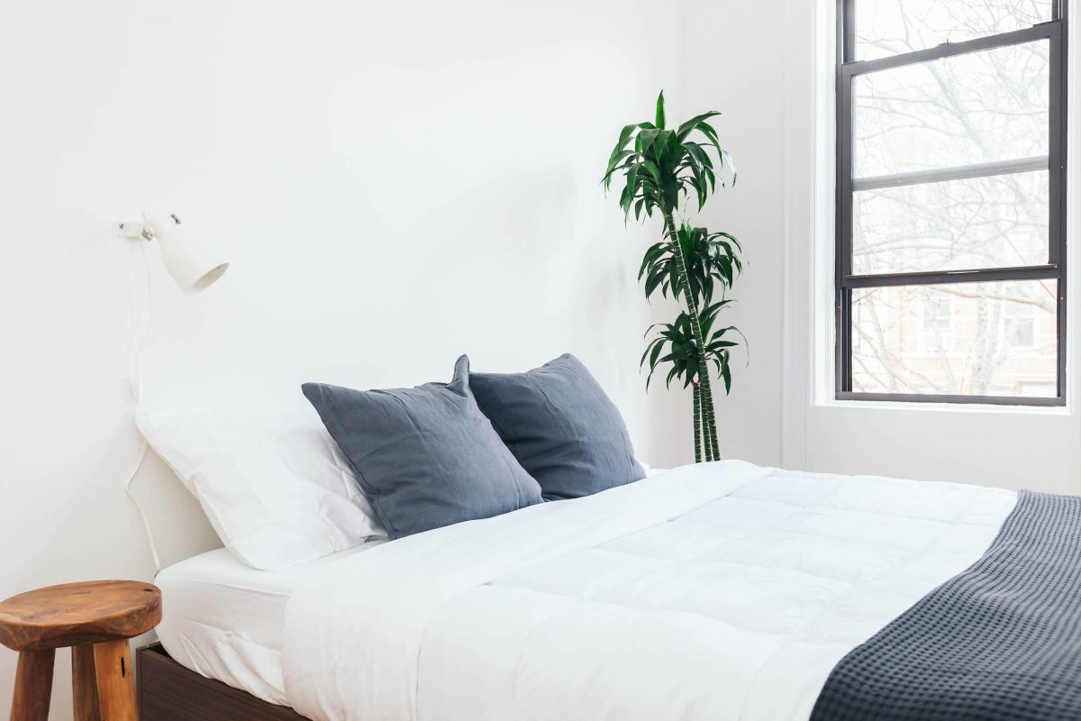 Minimalist bedroom with white walls, side table and plant